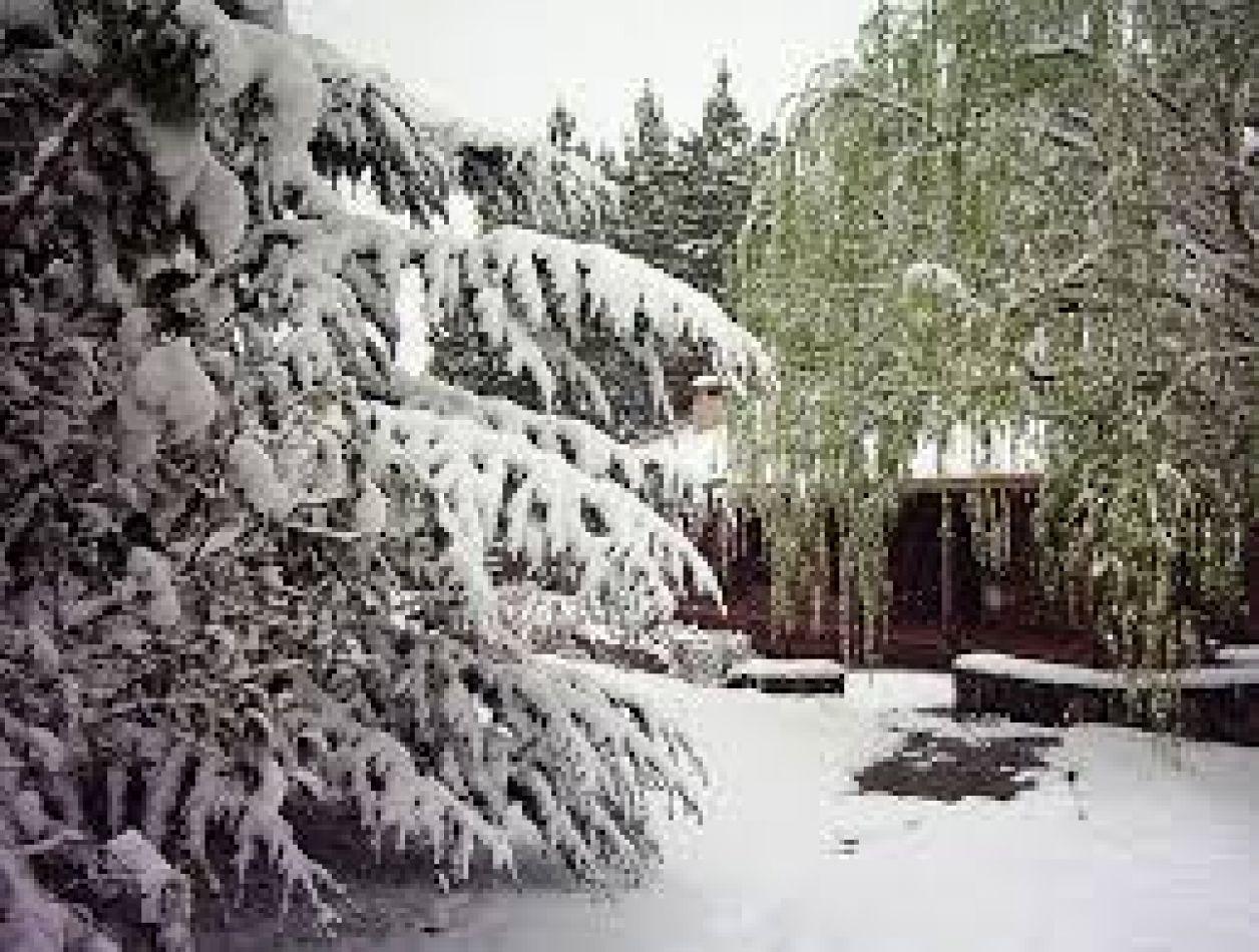 Se registraron las primeras nevadas en Catamarca y Tucumán