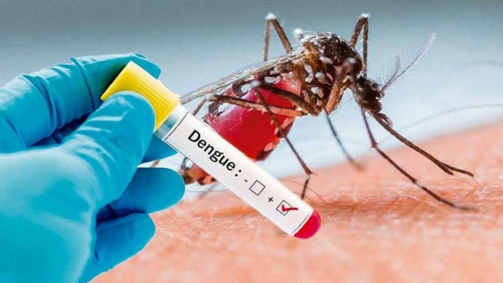 Todos los casos de dengue que registra Salta tienen lugar en Colonia Santa Rosa