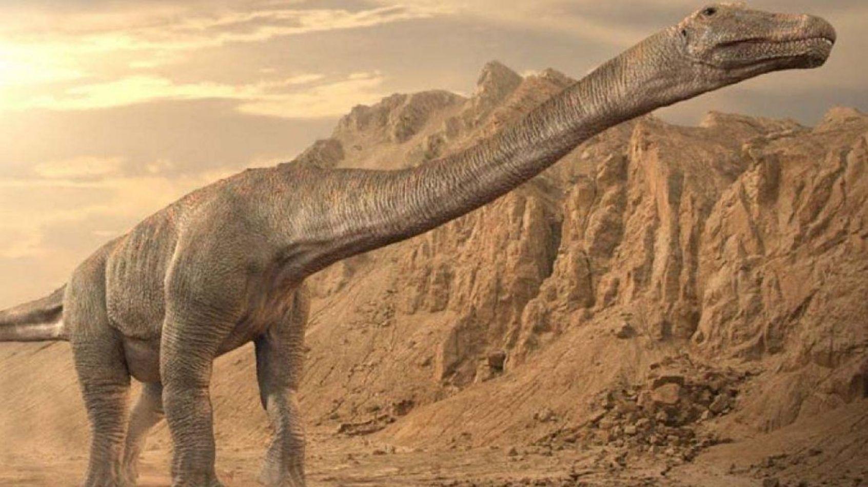 Un dinosaurio encontrado en Argentina sería el más grande de la historia
